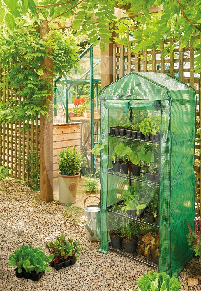 5a4d5cc8327 Mini Greenhouse 4 Tier Heavy Duty Cover - Greenhouses and Cold Frames
