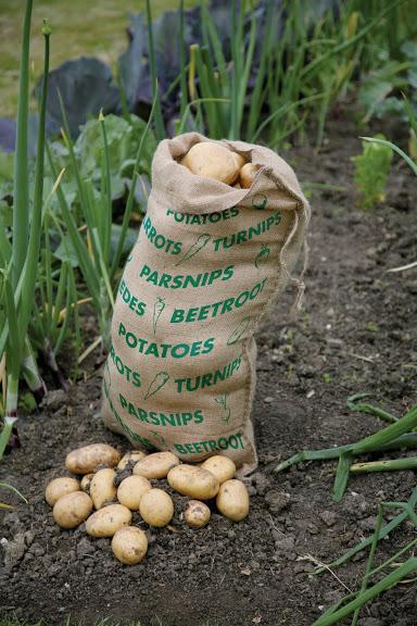 Haxnicks Haxnicks Jute Vegetable Storage Sack Gardening Supplies