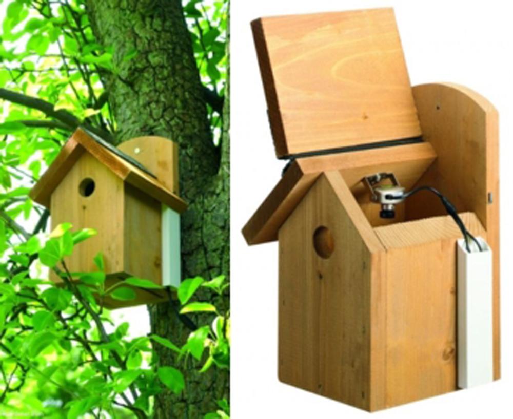 Gardman Bird Nest Box With Camera Wild Bird Care