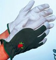 Premier Leather Palm Glove