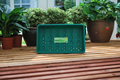 Standard Seed Tray Green