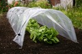 Easy Poly Tunnel X 2