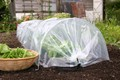 Easy Poly Tunnel X 1