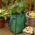 Potato Planter - 3 Pack