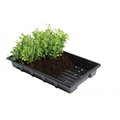 Professional Seed Trays (5)